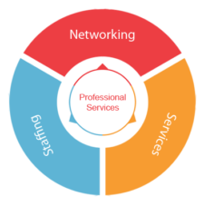 networking-services-software